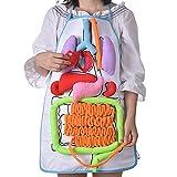 Unbekannt Per DIY 3D Plüsch gefüllt Viscera Internes Organmodell Für Kinder Herz + Darm + Magen +...