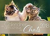 Best B & A Juegos de Cartas - Calendario de los Enamorados de los gatos Review
