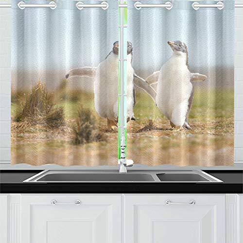 QIAOLII Zwei Junge Eselspinguin Küken glücklich Küche Vorhänge Fenster Vorhang Ebenen für Café, Bad, Wäscheservice, Wohnzimmer Schlafzimmer 26 X 39 Zoll 2 Stück -