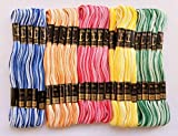 #6: Anchor Double Shaded Embroidery Cross Stitch/Long Stitch Threads, Multicolored Set of 25. Embroidery Threads