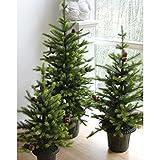 artplants - Künstlicher Tannenbaum Melchior im Topf mit Tannenzapfen, 120 cm - Unechter Weihnachtsbaum/Kunststoff Christbaum