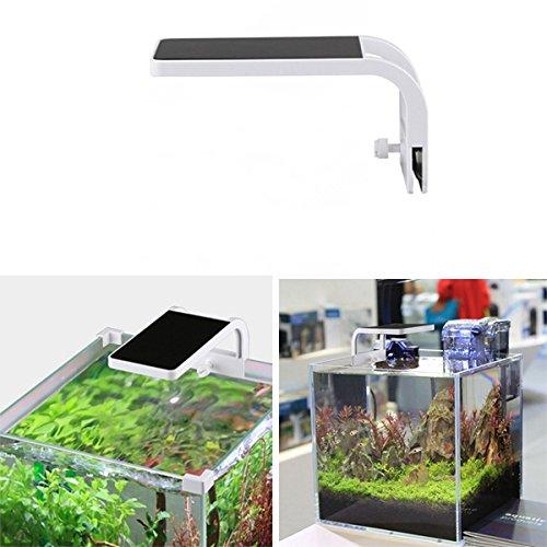 DADEQISH 5W LED Blue & White Aquarium Beleuchtung für Aquarium AC220V Innenlicht