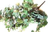 tatjana-land-deko 1,1m Wein Girlande Weinranke Blättergirlande Künstliche Weintrauben Blätter B108