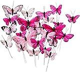 Tortendekoration Schmetterlinge - Variation in Pink (24 Stück)