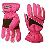 Ski Gloves Review and Comparison