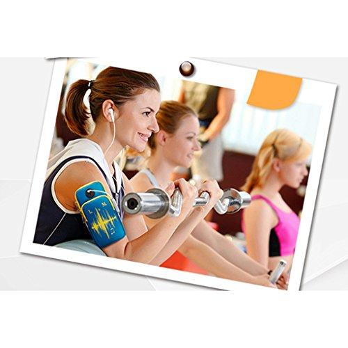 MagiDeal X3008 Fascia da Braccio Custodia Cover Supporto Borsa per Sport Palestra Jogging Passeggiate Ciclismo Hiking Corsa Blu
