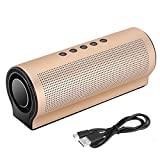 TYWZF Bluetooth Lautsprecher 20W Power Bank MP3 USB-Radio,Gold