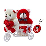 Sky Trends Romantic Valentine Love Couple Teddy Basket Cycle Valentine Romantic Teddyss Bears Gifts for Wife Girlfriend Boyfriend Fiance DSCS006