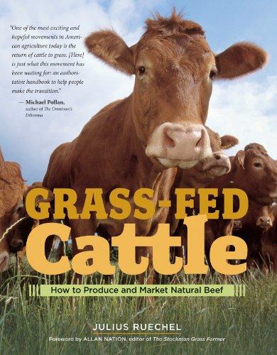 Grass Fed Cattle por Julius Ruechel