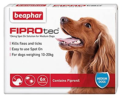 Beaphar FIPROtec Pipette for Extra Large Dog, Pack of 1