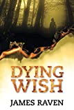 Dying Wish (DCI Jeff Temple)