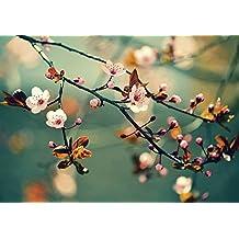 Pegatinas pared de tela no tejida o vinilo de pantalla Monty Peter Schöne Blühende japonesa cerezo shakura. Flores con un fondo Primavera en diferentes tamaños y colores disponible, material aterciopelado, Pink/Rosa, 70x100 cm / Vlies