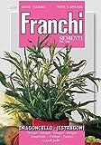 Estragon Dragoncello von Franchi Sementi