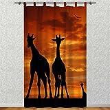 Clever-Kauf-24 Vorhang Gardine für Das Kinderzimmer Afrika Giraffen im Abendrot BxH 145 x 245 cm | Sichtschutz | Lichtdurchlässig | Schlaufenschal für lierliebende Romantiker