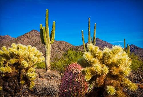 EdCott 9x6ft Western Hot Wüste Kaktus Hintergrund West Wild Natural Mountains Landschaft Dry Weed Green Stachelig Fotografie Hintergrund Neugeborene Kinder Kinder Baby Fotostudio Requisiten