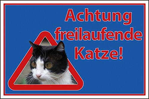 Katzen Schild 567s Freilaufende Katzen mit