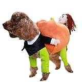 Haustier Hund Kürbis Hoodie Halloween-Kostüm Kleidung Katze-Kostüm, L