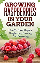 Growing Raspberries In Your Garden - How To Grow Organic Raspberries, Growing and Preserving: Canning, Preserving Berries, Backyard Berries, Square Foot ... Own Berries, Raspberry) (English Edition)