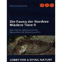 Die Fauna der Nordsee Niedere Tiere II: Weichtiere, Moostierchen, Nesseltiere & Rippenquallen