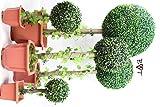 PREMIUM Buchsbaum 1,25 m Meter 125 cm hoch + große Buchsbaumkugel Ø 50 cm 500 mm grün dunkelgrün KOMPLETT mit Echtholzstamm Holz und Deko Efeuranke + Moos auf Wunsch mit Solarbeleuchtung SOLAR LICHT BELEUCHTUNG (Zubehör) mit Terracotta Topf Plastik und stabilem Fuß (Zement) Kunstpflanzen stabile Dekobäumchen künstliche Bäume Bäumchen Kugel Buxbaumkugel + Solarlicht LED Lampe 2 Lampen Lichterbaum Kunstblume Außen- und Innendekoration Balkonsichtschutz Balkon Pflanzen Sichtschutz