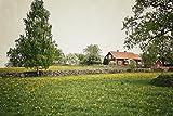 Zopix Poster Schweden Haus Sommer Verrotten Wandbild -