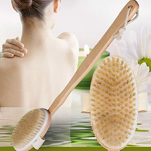 JMung'S Badebürste körperbürste Rückenbürste Badebürste,Massagebürste, mit langem Griff Naturborsten Dusche Bürste Rücken Körper Wäscher für trockene Haut Bürsten