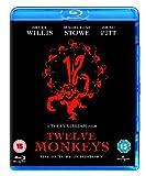 Twelve Monkeys [Blu-ray][Region Free] [1995]