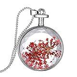 Beaums Presionado flor seca Collar redondo de la cadena en forma de cuello de caja de la foto de la bola de cristal pendiente de los accesorios