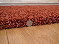 Shaggy Thick Modern Luxurious Terracotta Rust Rug High Pile Long Pile Soft Pile Anti Shedding Available in 9 Sizes by SuperRugStore