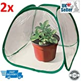 Green House–Pop Up Mini Pop Up pour plante serre, Lot de 2