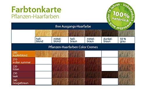 LOGONA Naturkosmetik Coloration Pflanzenhaarfarbe, Color Creme - 200 Kupferblond - Blond, Natürliche & pflegende Haarfärbung (150g) - 5