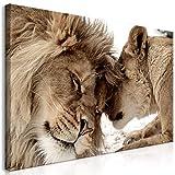 murando Quadro Mega XXXL Leone 160x80 cm Straordinario Stampa su Tela XXXL per Un Facile Montaggio Fai da Te Grande Immagini Moderni Murale DIY Decorazione da Parete Africa Animale g-B-0034-ak-h