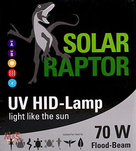 Econlux SolarRaptor 70W PAR38 HID-Flood-Strahler -