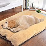 """Authda Puppy Bed Cushion for Small Dog 28"""" x 20"""" Pet Bed Washable Zipper Mattresses PP Cotton Dog Beds Mat Comfortable"""