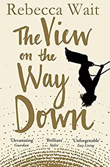 The View on the Way Down by [Wait, Rebecca]