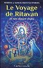 Le voyage de Ritavan et ses 12 chats - 76 cartes oracle et un livre