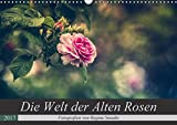Die Welt der Alten Rosen (Wandkalender 2017 DIN A3 quer): Malerische Fotografien von alten Rosensorten. (Monatskalender, 14 Seiten ) (CALVENDO Natur)