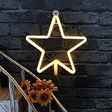 LED Stern Neonlicht Zeichen - Leuchtreklame Nachtlichter Warmweiß Shine Wand Dekor Batterie und USB Power Innenbeleuchtung Nachttisch und Tischlampen für Wohnzimmer, Schlafzimmer, Party, Weihnachten Hochzeit Geburtstagsgeschenk
