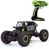 R.K Remote Controlled 2.4 Ghz 4 Wheel Drive Rock Crawler Rally Car - Multi Color