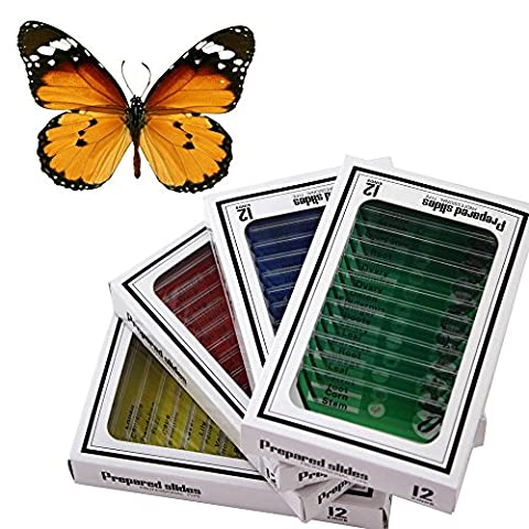 BestOfferBuy 48pcs Animals Insects Plants Flowers Plastic Prepared Microscope Slides Set + 1 pc Real Butterfly Specimen Children Student Science Education Toy
