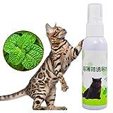 Cat Mint Juguete de Entrenamiento para Mascotas Natural Healthy Organic Premium Catnip Scratcher Spray Cat Mint Sabor Mentol Gatos Trata de Juguete Divertido