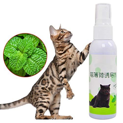 RUIBUY Herbe à Chat en Spray Vaporisateur Cat Naturals...