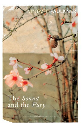 The Sound And The Fury (Vintage Classics) by William Faulkner (1995-01-19)