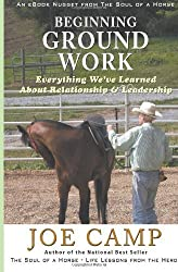 Beginning Ground Work: Everything We've Learned About Relationship and Leadership: 6 by Camp, Joe (2012) Paperback