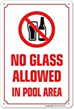 Riongeeo Kein Glas in Pool Bereich erlaubt Warnschild–Schwimmen Pool Sicherheit–Pool Rules Metall Platte Blechschild Aluminium Plaque 20,3x 30,5cm Innen strapazierfähige Outdoor
