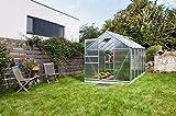 Gartenwelt Riegelsberger Gewächshaus Venus - Ausführung: 6200 HKP 4 mm Alu, Fläche: ca. 6,2 m², mit 2 Dachfenster, Sockel: 1,92 x 3,17 m
