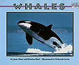 Whales (Mondo Animals)