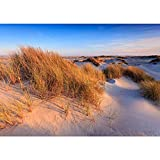 Fototapete Strand - ALLE STRANDMOTIVE auf einen Blick ! Vlies PREMIUM PLUS - 200x140 cm - BEAUTIFUL DUNES - Strand Düne Wasser - no. 246