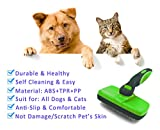 Hundebürste Katzenbürste