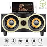 Celestech CT_XM6 Wooden Bluetooth Wireless Speaker, Unbeatable Stereo Audio, Power Bass Diaphragm 3D HiFi Sub-woofer/FM/AUX Line/TF Card With Built-in Mic